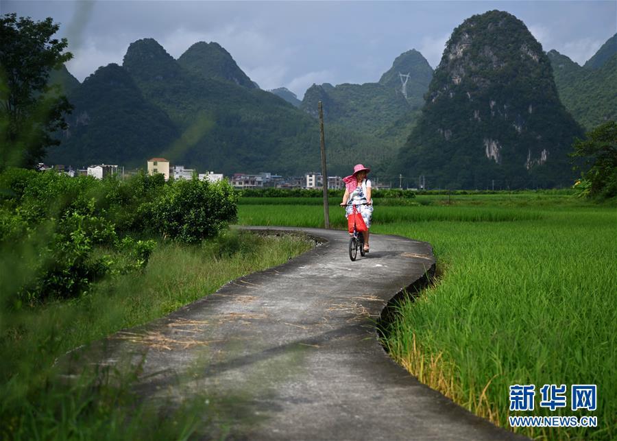 广西柳州:女教师33年坚守托起村里娃的求知梦
